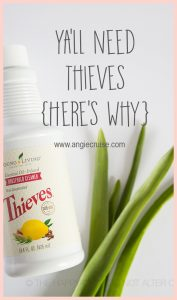When I told a friend how frustrated I was trying to find a cleaner that I actuallyliked, she told me to try the Thieves Cleaner. I was tired of smelling vinegar in my kitchen every day, and wanted something that would actually make my house smell good.