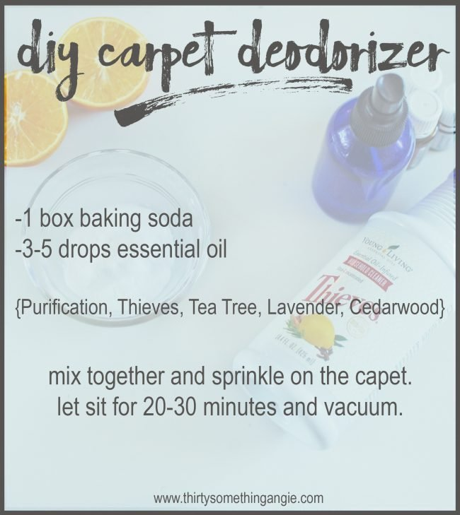 DIY Cleaning Recipes: Carpet Deodorizer