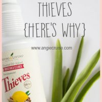 Ya'll Need Thieves: My Favorite Natural Cleaner