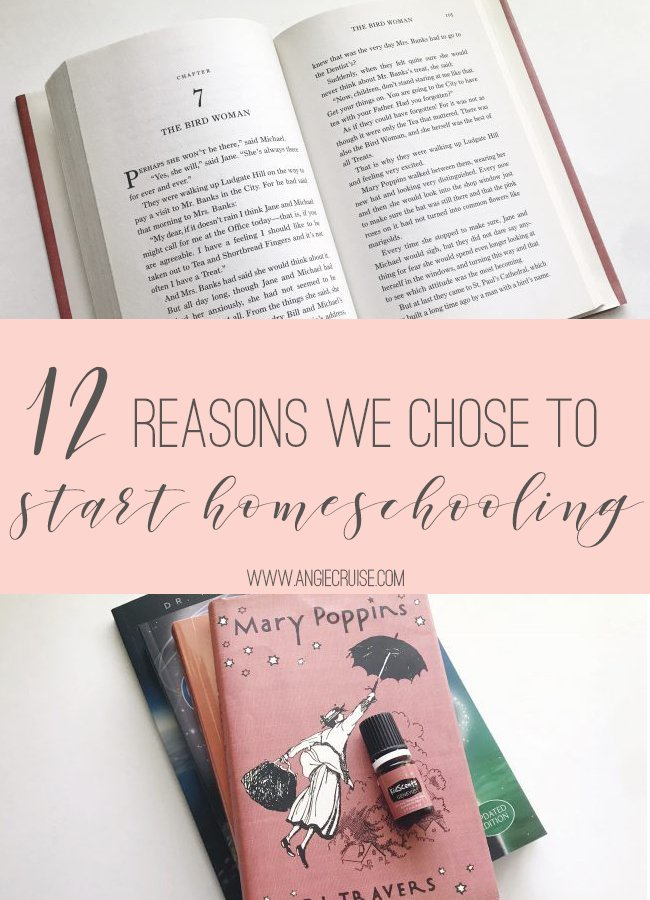 Why did we decide to homeschool? The decision seemed to come out of the blue this year, so I'm breaking down our reasons for leaving public school and pursuing homeschooling.