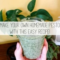 Easy Pesto Recipe – How to Make Your Own Pesto