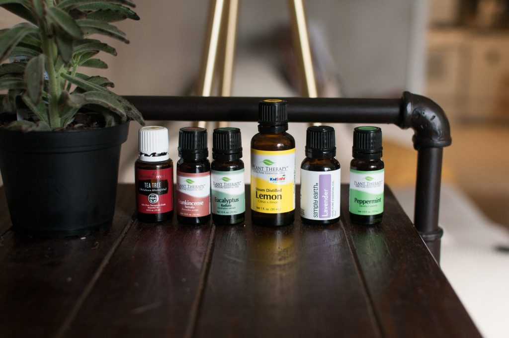 essential oil bottles and house plant on shelf