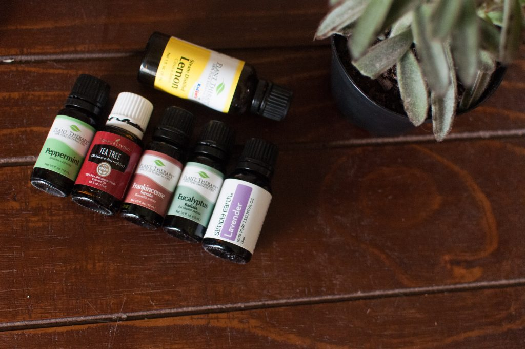 essential oil bottles and houseplant
